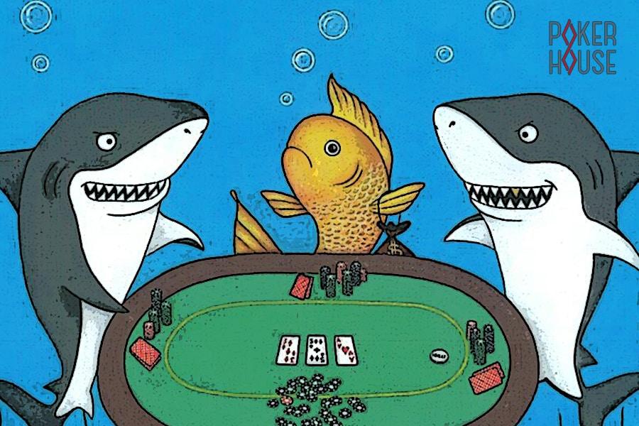 Фиш в покере